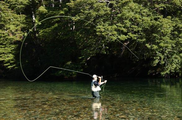 descargar pelicula rio