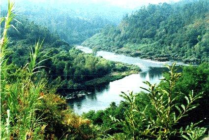 Río Miño por debaixo de Frieira. Fotografía do autor da web.